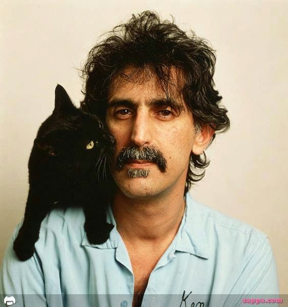 Frank Zappa on caturday