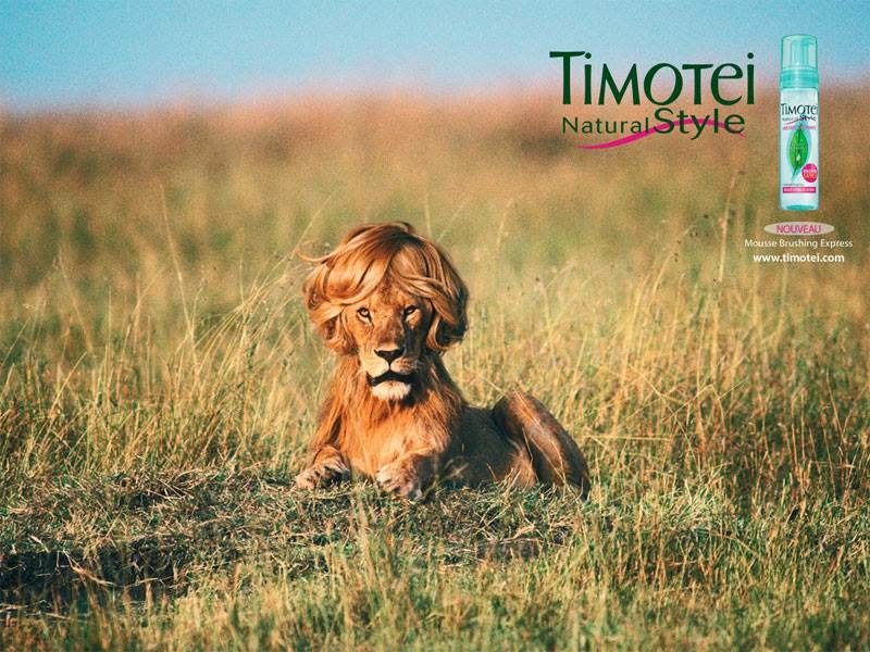 Ancienne Publicité - Timotei