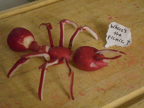 Food Design - ant