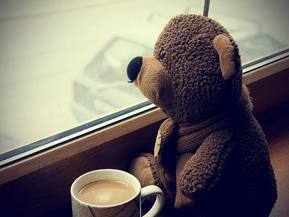 teddy bear - coffee