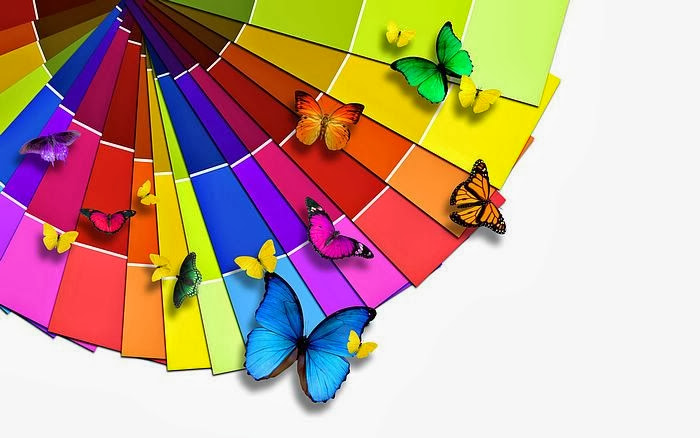 colours - butterflies