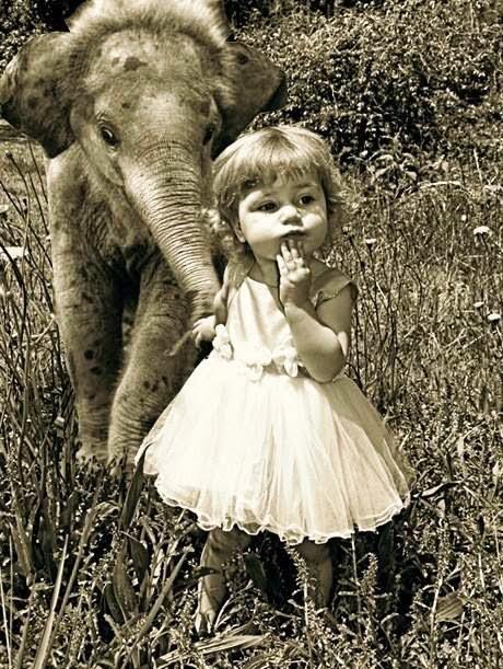 Babies: elephant + girl