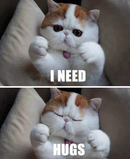I need... hugs